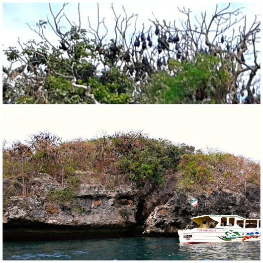 Hundred Islands Alaminos Pangasinan Bat Island https://mycupoftin.files.wordpress.com/2015/04/2.jpg