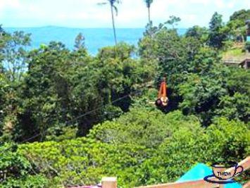 250-meters Zipline at Picnic Grove, Tagaytay