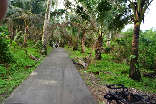 This is the road we took going to Alitap Falls. The next picture may excite or fright :D
