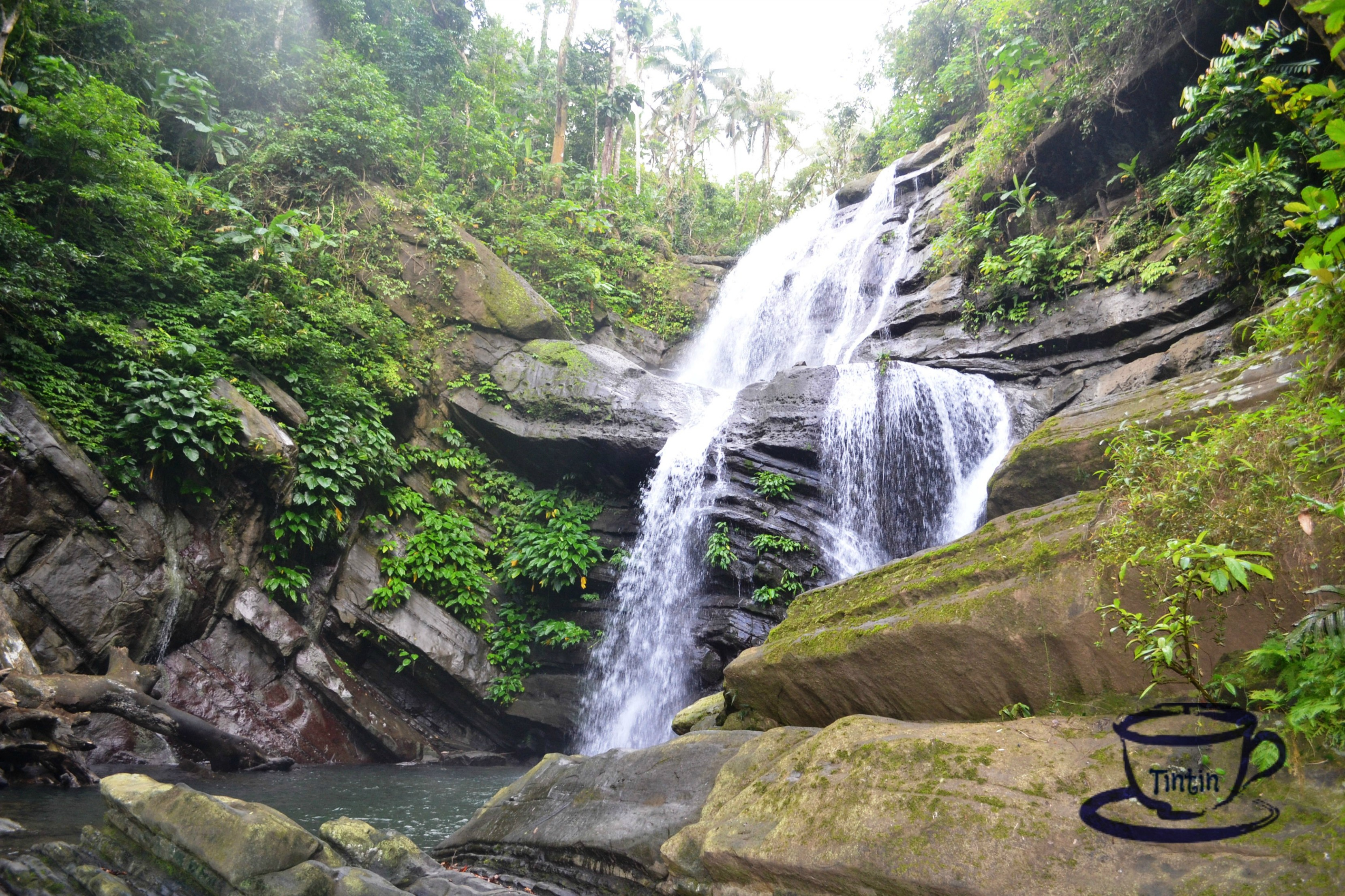 8 Things You Must See In Mauban Quezon My Cup Of Tin