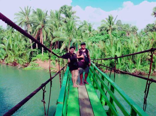 second bridge dahoyhoy falls mycupoftin.wordpress.com